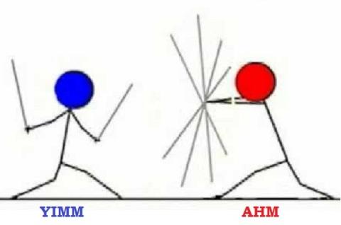 yimm vs ahm